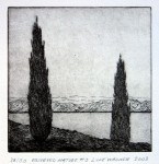 Observed nature 3, etching, Luke Wagner