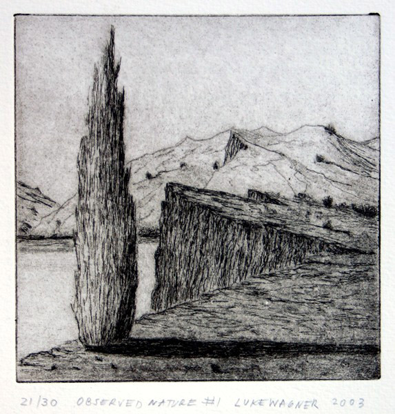 Observed nature, etching, Luke Wagner