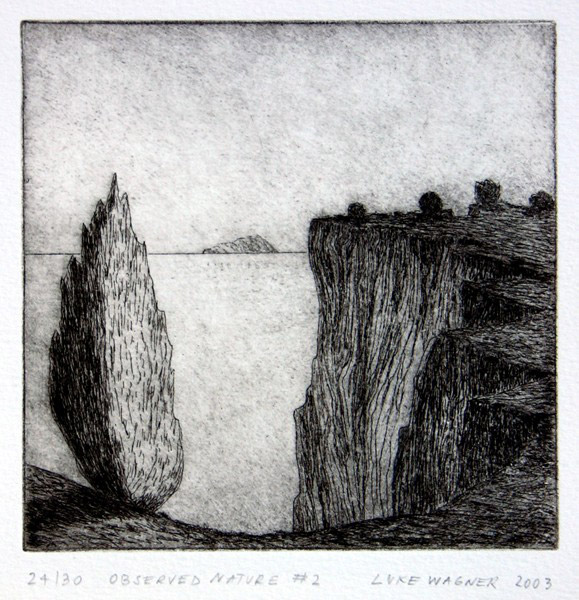 Observed nature 2, etching, Luke Wagner