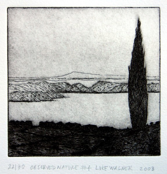 Observed nature 4, etching, Luke Wagner
